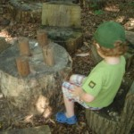 Locust Grove Nature Center - chairs