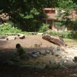 Locust Grove Nature Center - sand