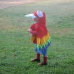 Halloween 2010 - Scarlet Macaw