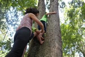 mom helping kids climb trees