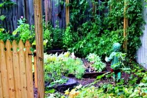 toddler garden rain jacket