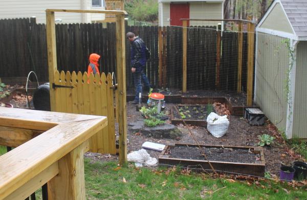 gardening in rain