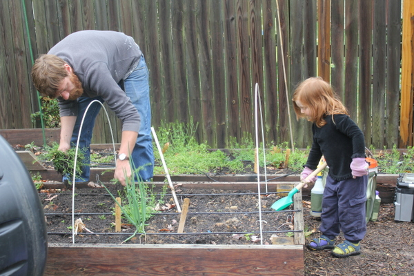 gardening with child and love and carrots
