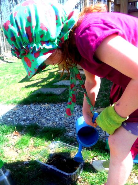 gardening 4-12-15