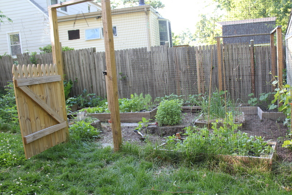 garden built by Love and Carrots