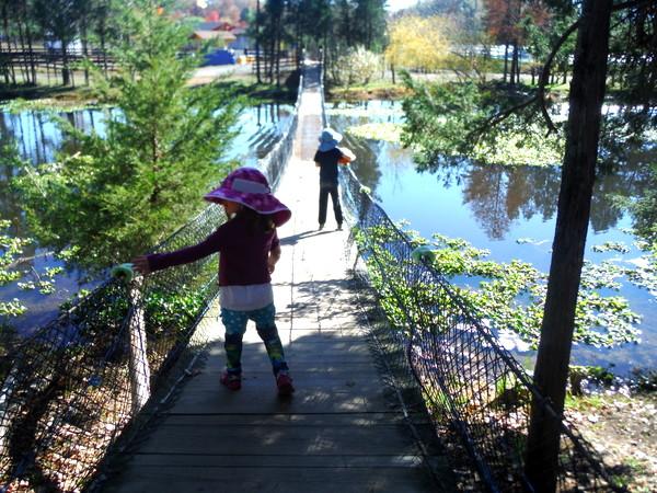 Crunchy-Chewy Mama kids on bridge at pumpkin patch